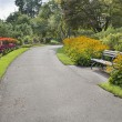 Neighborhood Parks Flowers Lined Path — Stock Photo