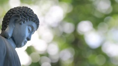 Bronze Buddha Sculpted Statue in Traditional Sitting Meditation Pose against Shimmering Green Out of Focus Bokeh Blurred Background 1080p — Stock Video