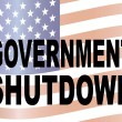 Government Shutdown Text with US Flag Illustration — Stock Vector #32676373