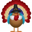 Colorful Turkey with Pilgrim Hat Illustration — Imagens vectoriais em stock