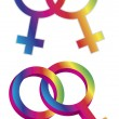 Female Gender Same Sex Symbols Illustration — Stock Vector