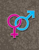 Male and Female Gender Symbol Interlocking — Stock Vector