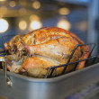 Turkey Roasting in Oven Bokeh Background — Stock fotografie