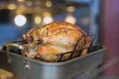 Turkey Roasting in Oven Bokeh Background — Stock Photo