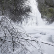 Horsetail falls Frozen in Winter with Tree Branches — Stock Photo