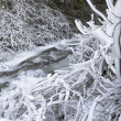 Frozen Ice and Snow Along Flowing Stream — Stock Photo