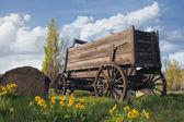 Old Wagon at Farm Ranch — Stock Photo