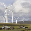 Wind Farm by Cattle Ranch in Washington State — Stock Photo