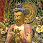 Wood Carved Sitting Buddha Closeup — Stock Photo #48742139