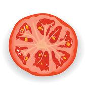 Piece of fresh tomato — Stock Vector
