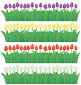 Flower borders set(vector, CMYK) — Stock Vector