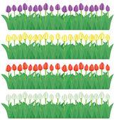 Flower borders set(vector, CMYK) — Stock Vector
