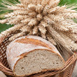 Loaf of bread — Stock Photo