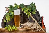 Natureza morta com cerveja — Foto Stock
