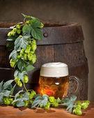 Bira ile natürmort — Stok fotoğraf