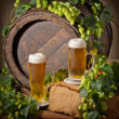 Beer and hops — Stock Photo