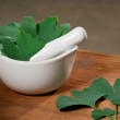 Ginkgo — Stock Photo #28219395