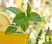 Glass of juice — Stock Photo