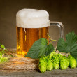 Still life with beer and hops — Stock Photo