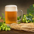 Still life with beer and hops — Stock Photo #29892251