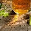 Stock Photo: Beer and raw material for beer production