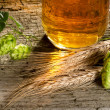 Beer and raw material for beer production — Stock Photo #30550959