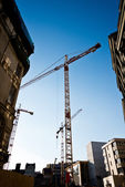 Tower cranes — Stock Photo