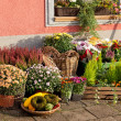Stock Photo: Outside florist shop