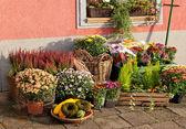 Outside florist shop — Stock Photo