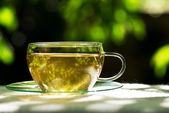 Tea with herbaceous plant — Stock Photo