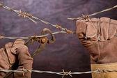 Barbed wire with hand — Stock Photo