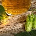 Hop Cones And Barley — Stock Photo #41011861