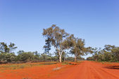 Unsealed road in Gundabooka National Park — Stock Photo