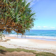Watergoes Beach in Byron Bay in Australia — Stock Photo #45844783