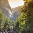 Beautiful Stream in Yosemite National Park — Stock Photo