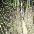 Canopy walkway in Kakum National Park, Ghana — Stock Photo #41702275