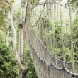 Canopy walkway in Kakum National Park, Ghana — Stock Photo #41702351