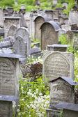 Yahudi mezarlığı — Stok fotoğraf