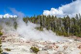 The highest geyser in Yellowstone National Park, Utah, USA — Stock Photo