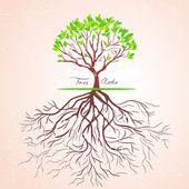 Raízes das árvores — Vetorial Stock