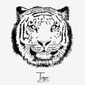 Tiger black — Stock Vector