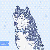 Husky — Vector de stock