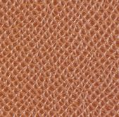 Light brown leather texture — Stock Photo