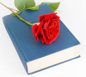 Red rose on the closed book — Stock Photo