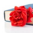 Red rose inside of the closed book with space for text — Stock Photo #46382155