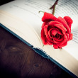 Detail of red rose on the open book with space for text, old style — Stock Photo #46416493