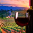 Glass with red wine and bottle, atmosphere sunset — Stock Photo