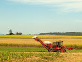 Red Farm machine cane harvester on Australian agriculture land — Stock Photo