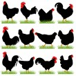 12 Roosters and Hans Silhouettes Set — Stock Vector