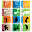 Sport School Insignias set — Stock Vector